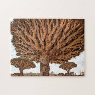 Dragon Blood Tree, Socotra Island, Yemen Jigsaw Puzzle