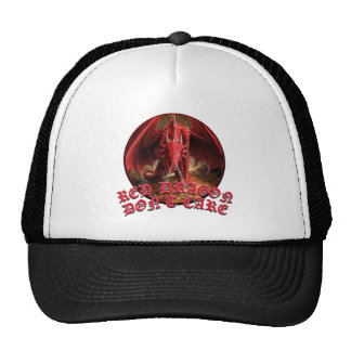 Dragon Dont Care Hat
