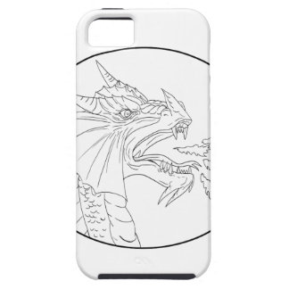 Dragon Fire Circle Drawing Case For The iPhone 5