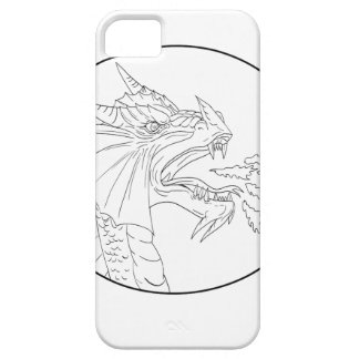Dragon Fire Circle Drawing iPhone 5 Cover