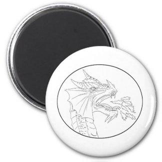Dragon Fire Circle Drawing Magnet