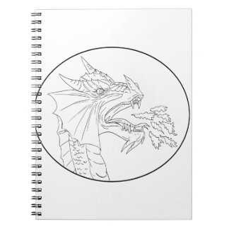Dragon Fire Circle Drawing Notebooks