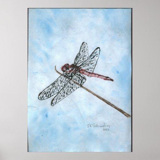 Dragon Fly Print