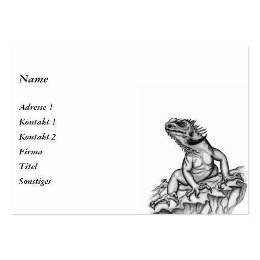 Dragon on the Rock Business Card Template