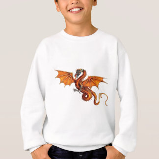 dragon-orange sweatshirt