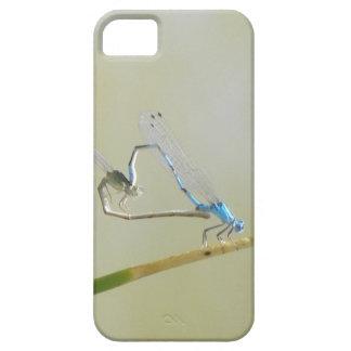 Dragonflies / damselflies in love iPhone 5 cover