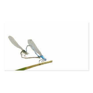 Dragonflies/damselflies in love pack of standard business cards