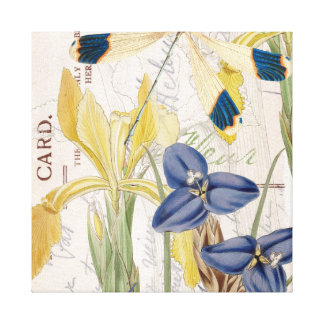 Dragonfly and Irises Canvas Print