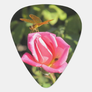 Dragonfly and Ladybug on Pink Rose Guitar Pick