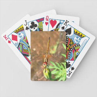 Dragonfly Bicycle Playing Cards