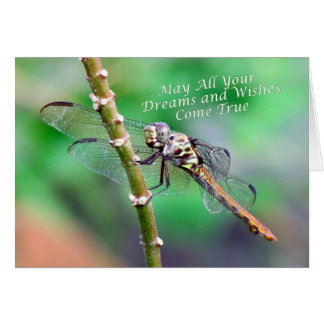 Dragonfly Birthday Card (7178)