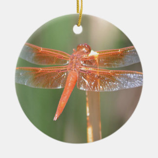 Dragonfly Ornaments | Zazzle.ca