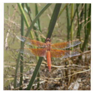 Dragonfly Ceramic Tile (Large Image)