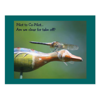 Dragonfly Co Pilot Humorous Nature Postcard