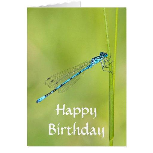 Dragonfly, damselfly happy birthday card