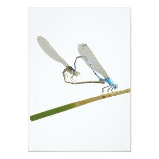 "Dragonfly/damselfly in love 5"" x 7"" invitation card"