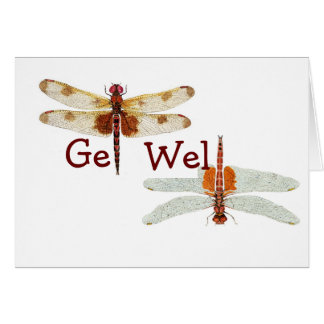Dragonfly Get Well Card