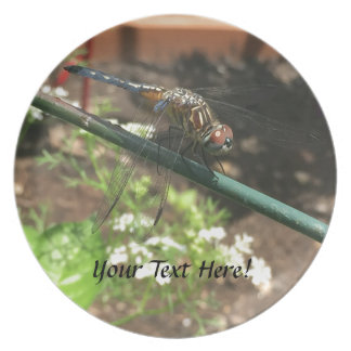 Dragonfly Gifts Plate