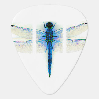 Dragonfly Guitar Pick