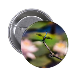 Dragonfly Handstand by Erina Moriarty Photography 2 Inch Round Button