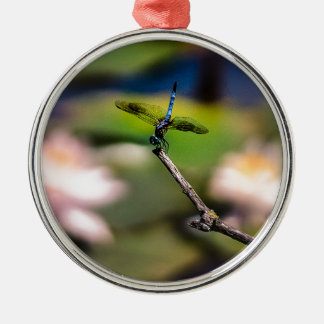 Dragonfly Handstand by Erina Moriarty Photography Metal Ornament