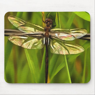 Dragonfly In Brown And Yellow Mouse Pad