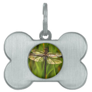 Dragonfly In Brown And Yellow Pet ID Tags