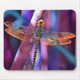 Dragonfly In Orange and Blue Mouse Pad