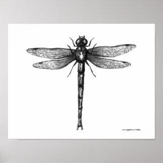 Dragonfly ink PEN drawibg art Poster