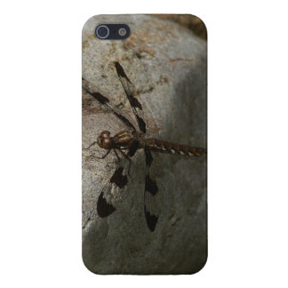 Dragonfly iPhone 5/5s Glossy Finish Case. iPhone 5 Case