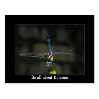 Dragonfly It's About Balance Postcard