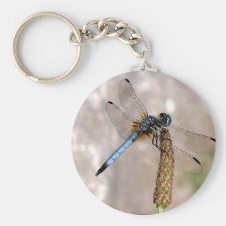 Dragonfly! Keychain