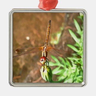 Dragonfly Metal Ornament