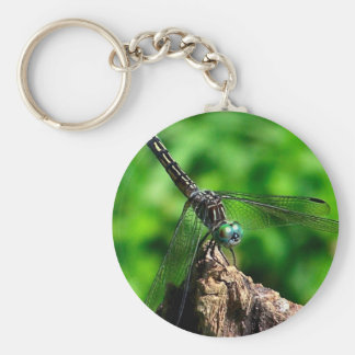 Dragonfly Nature Photo Keychain