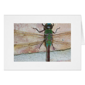 DRAGONFLY NOTE CARD