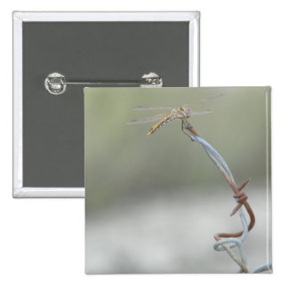 Dragonfly on Barb wire 2 Inch Square Button