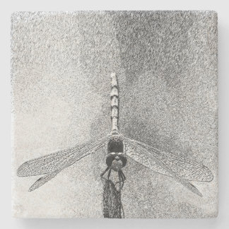 Dragonfly on Branch Stone Coaster