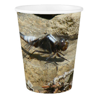 Dragonfly On Stone Paper Cup