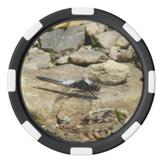 Dragonfly On Stone Poker Chip