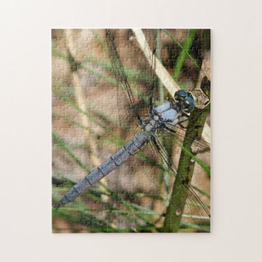 Dragonfly Photo Puzzle. Jigsaw Puzzle