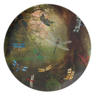 Dragonfly Playground Plate