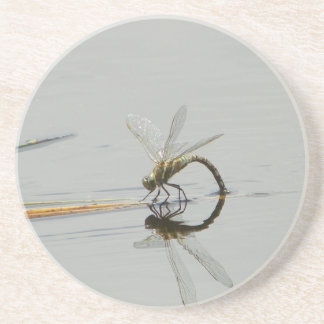 Dragonfly reflection beverage coasters