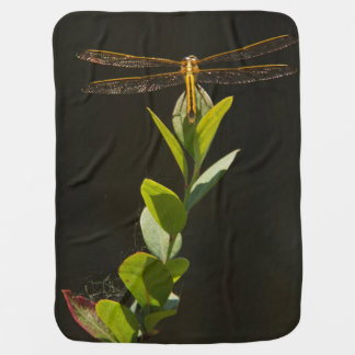 Dragonfly Resting on Blueberry Bush Receiving Blankets