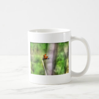 DRAGONFLY RURAL QUEENSLAND AUSTRALIA ART EFFECTS COFFEE MUG