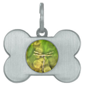 DRAGONFLY RURAL QUEENSLAND AUSTRALIA ART EFFECTS PET NAME TAGS