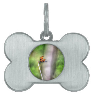 DRAGONFLY RURAL QUEENSLAND AUSTRALIA ART EFFECTS PET TAGS