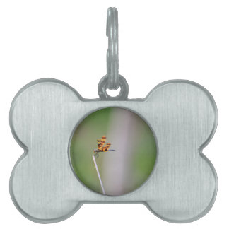 DRAGONFLY RURAL QUEENSLAND AUSTRALIA PET TAG