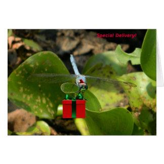 Dragonfly Santa Greeting Card