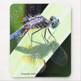Dragonfly Shadows Mouse Pad