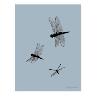 Dragonfly Silhouettes Postcard